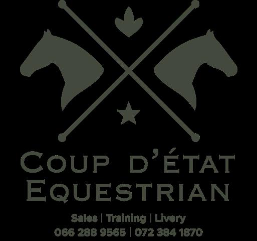 Coup d etat logo